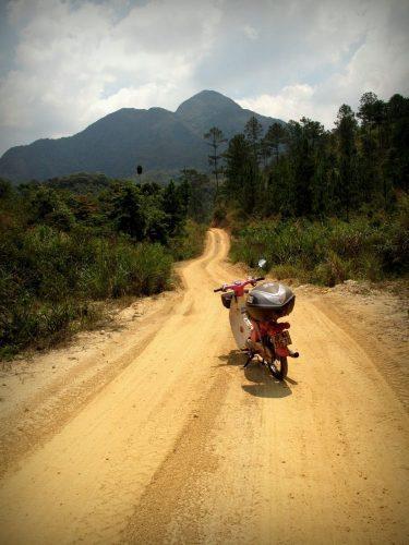 Short Ride Jungle