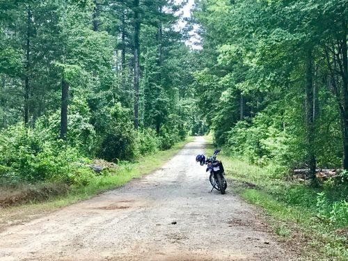 Yamaha WR250R in the woods