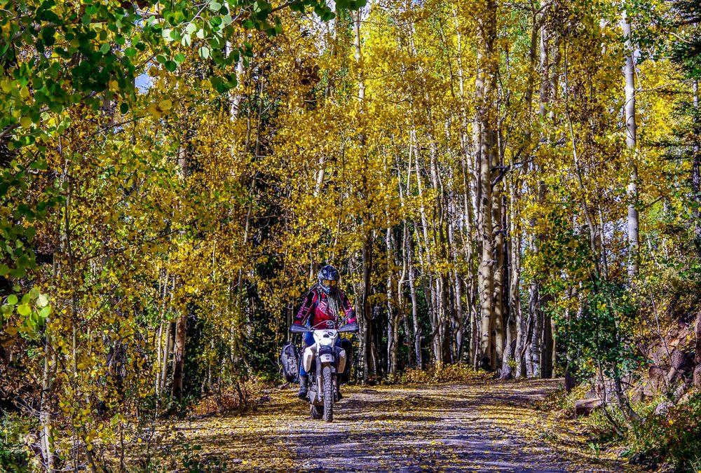 First Time Off-Road: Where To Begin www.womenadvriders.com
