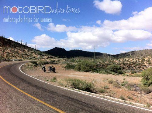 Motobird Adventures